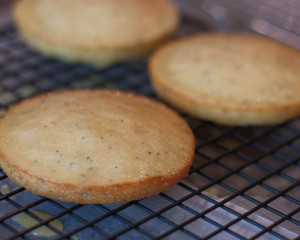 Poppy Seed Muffin Tops
